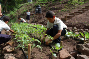 youth planting in Nicaragua